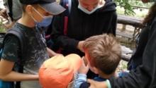 La mia esperienza da volontaria a Naturando